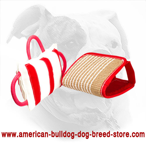 American Bulldog Bite Pillow