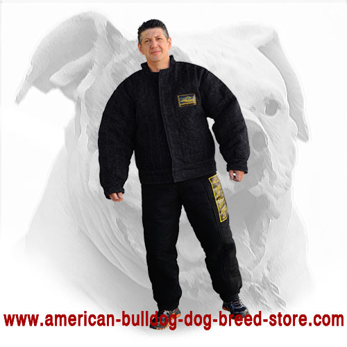 Training American Bulldog Bite Suit
