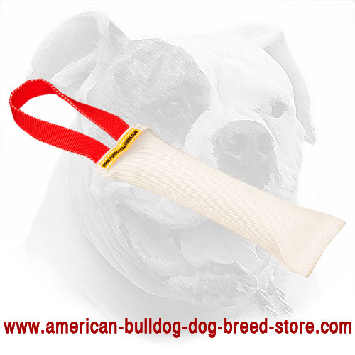 Fire Hose Dog Bite Tug for American Bulldog