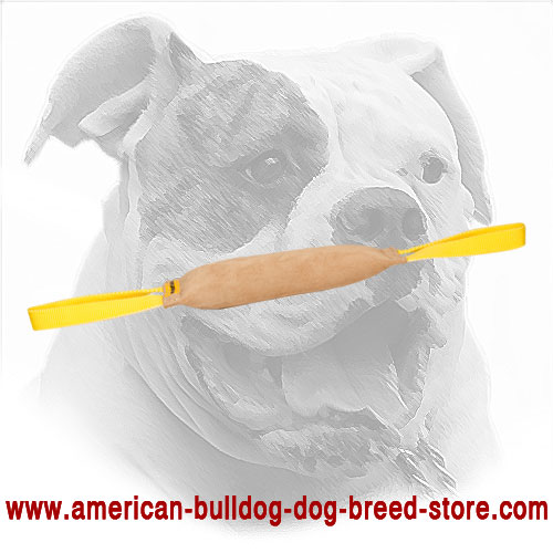 Leather Dog Bite Tug for American Bulldog