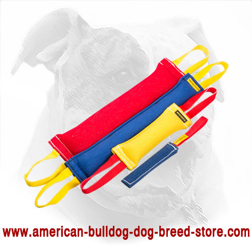 Set of Bite Tugs for American Bulldog