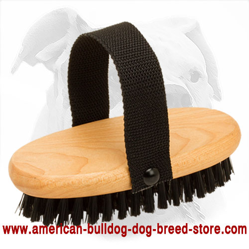 Dog Bristle Brush for American Bulldog