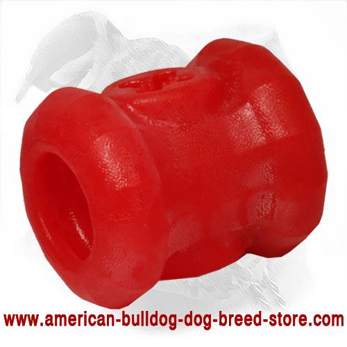American Bulldog Toy for Chewing