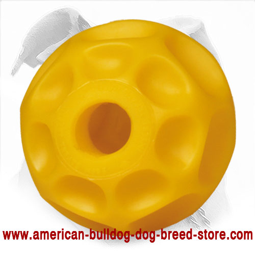 American Bulldog Ball to Dispense Treat