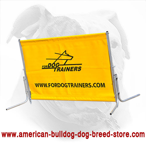 Training American Bulldog Barrier