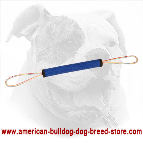 French Linen American Bulldog Play Roll