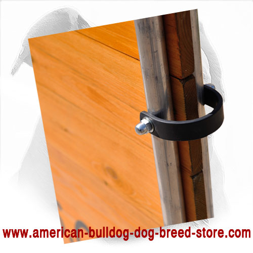 Training Wood Barrier for American Bulldog