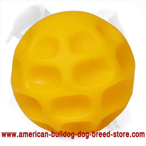 Chewing American Bulldog Toy