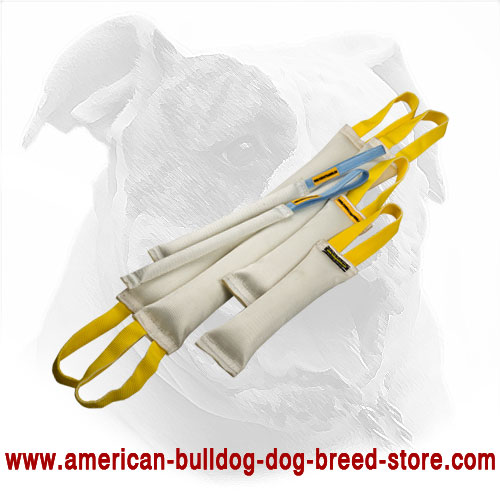 Fire Hose Dog Bite Tugs for American Bulldog