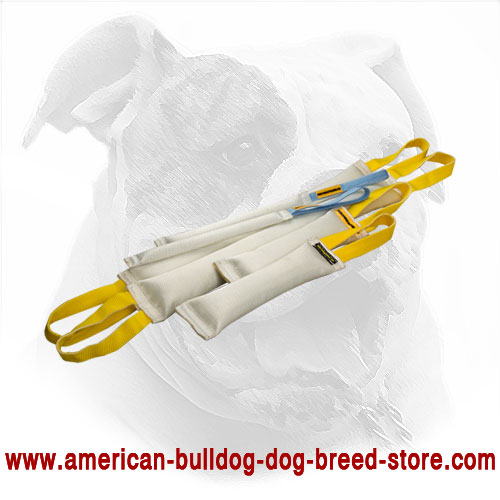 American Bulldog Set of Bite Tugs