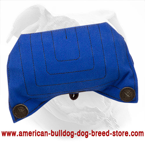 American Bulldog Bite Builder for Puppy