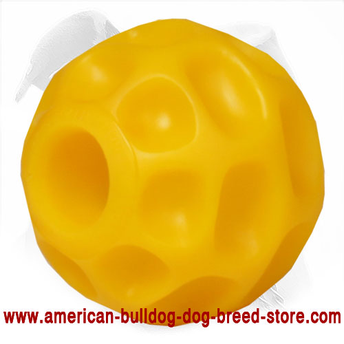 Tetraflex Chewing Toy for American Bulldog