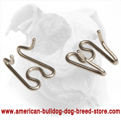 Links for Pinch American Bulldog Collar
