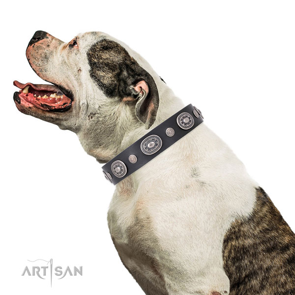 Reliable buckle and D-ring on full grain leather dog collar for walking in style