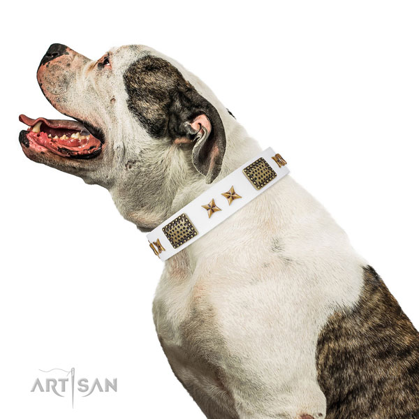 Exquisite adornments on daily use full grain natural leather dog collar