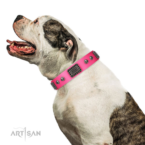 Trendy full grain genuine leather collar for your lovely doggie