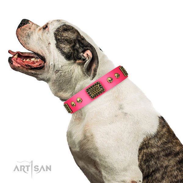 Strong fittings on genuine leather dog collar for walking
