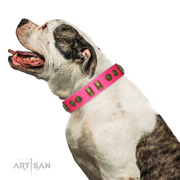 Everyday walking dog collar of natural leather with unusual adornments