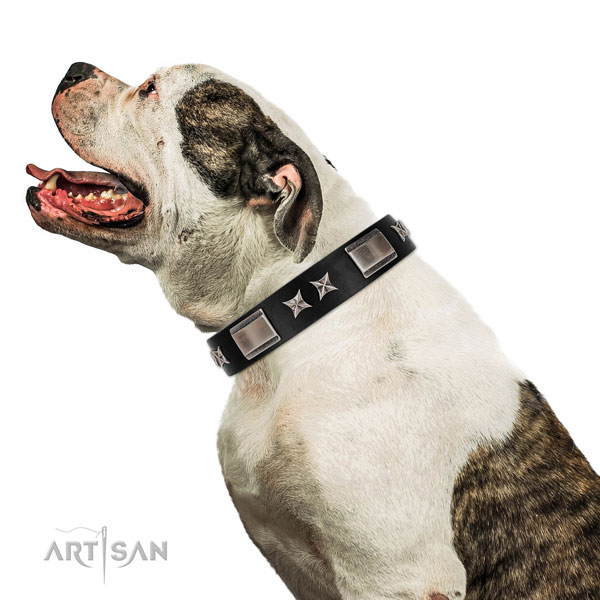 Fancy walking soft to touch full grain genuine leather dog collar with studs