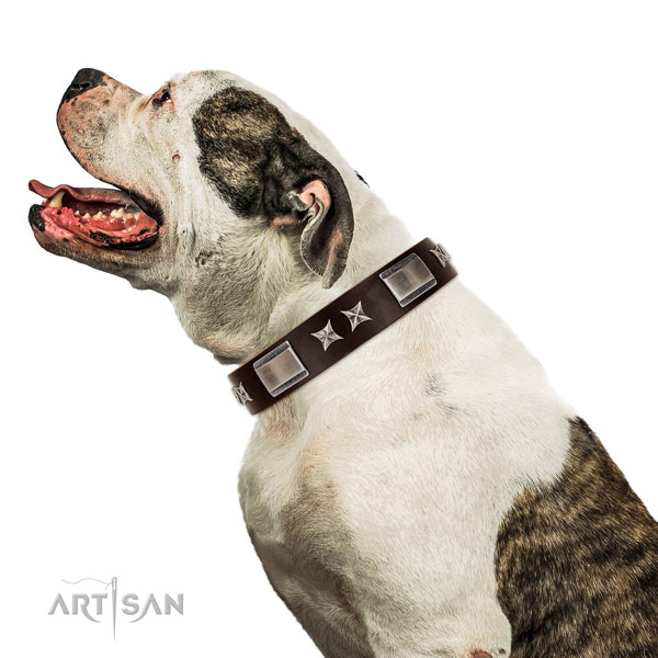 Easy to adjust collar of full grain natural leather for your handsome dog