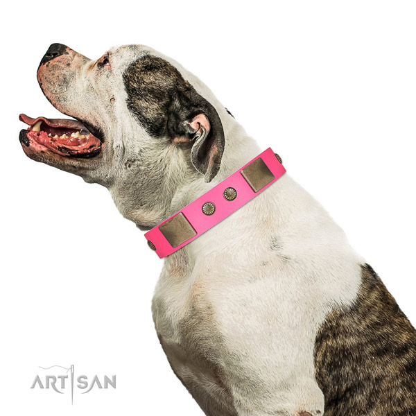 Corrosion proof hardware on full grain leather dog collar for comfy wearing