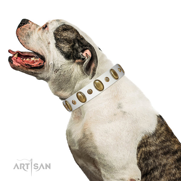 Easy wearing top notch full grain leather dog collar with decorations