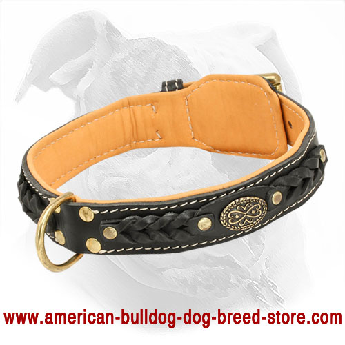 Soft Leather American Bulldog Collar