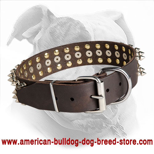 Strong Leather American Bulldog Collar