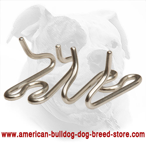 Pinch American Bulldog Collar's Links
