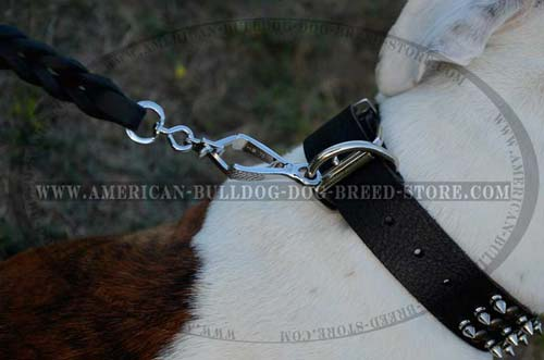 American Bulldog Leather Collar with Simple for Leash Attachment Function
