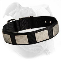 best nylon collar with plates