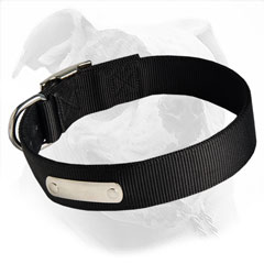 Reliable and strong canine collar perfect for use in any weather