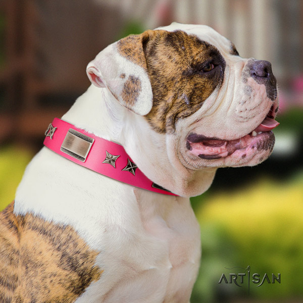 American Bulldog significant genuine leather dog collar with decorations for stylish walking