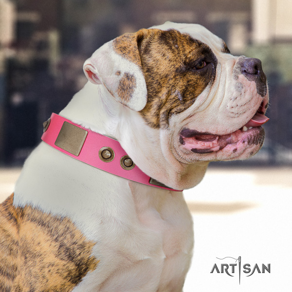 American Bulldog everyday walking leather collar with significant decorations for your doggie
