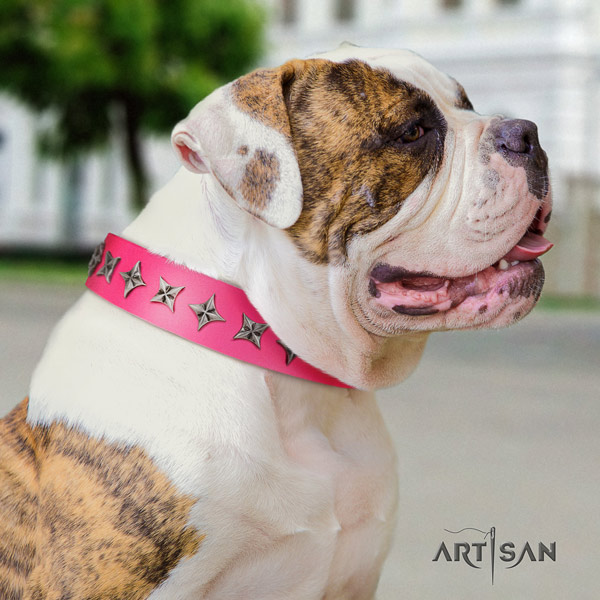American Bulldog unique genuine leather dog collar with decorations for walking