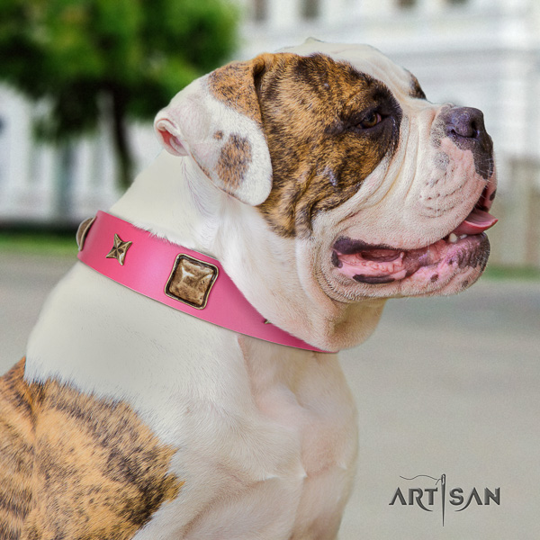 American Bulldog unique genuine leather dog collar for comfy wearing