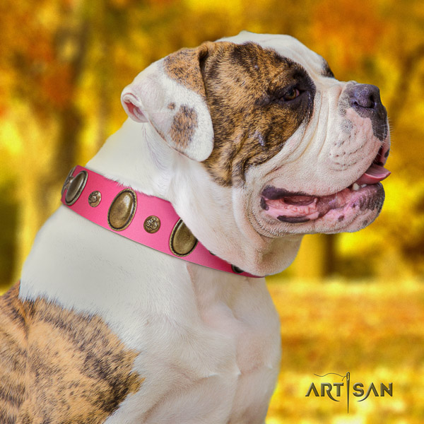 American Bulldog inimitable natural genuine leather dog collar for easy wearing