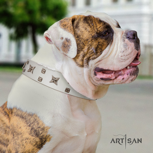 American Bulldog decorated natural genuine leather dog collar for comfy wearing