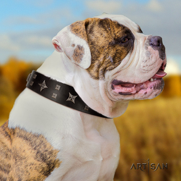 American Bulldog decorated leather dog collar for handy use