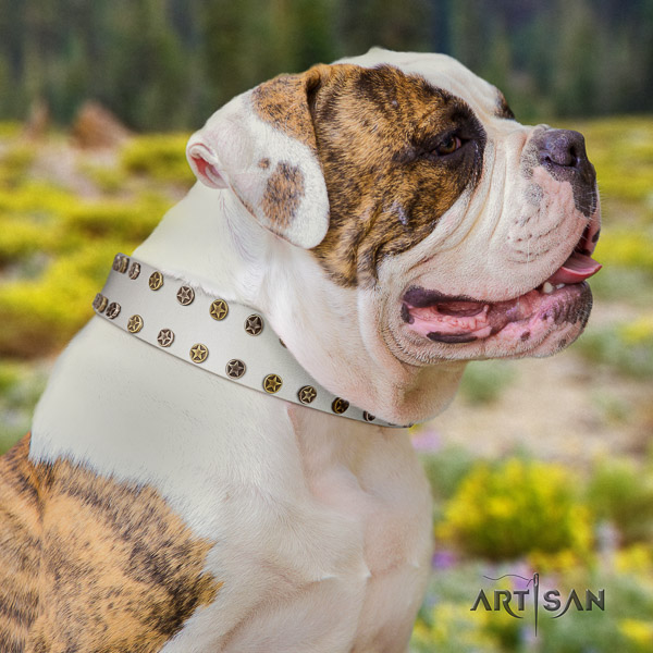 American Bulldog decorated genuine leather dog collar for handy use