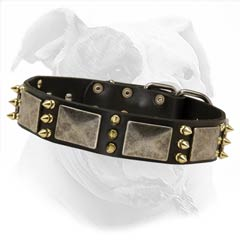 High Quality Leather Dog Collar for Walking and Training