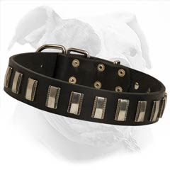 Excellent training collar for American Bulldog