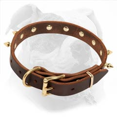 Spiked Brown Leather Collar for Fashion Walking