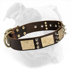 Fashion Leather Dog Collar for American Bulldog Walking