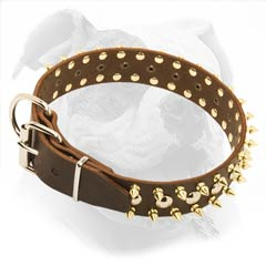 Luxurious Leather Collar for American Bulldogs