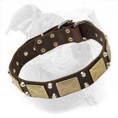 Stylish Leather Dog Collar for American Bulldogs