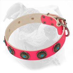 Fashionable Pink Leather Collar for Strong American Bulldog Girls
