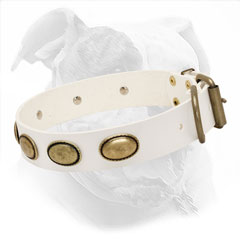 White Leather Collar for Walking