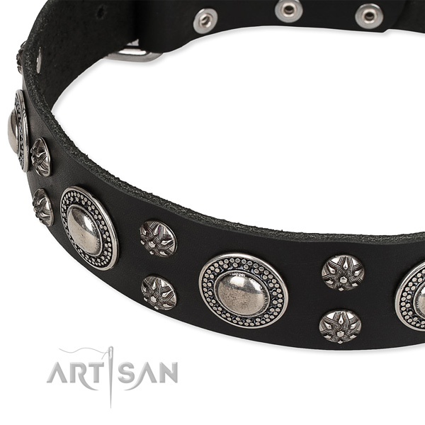 Adjustable leather dog collar with extra sturdy chroem plated buckle