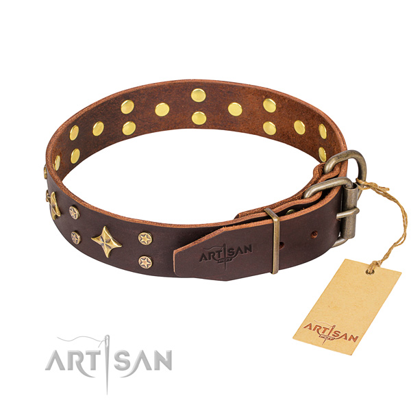 Daily walking leather collar with adornments for your dog